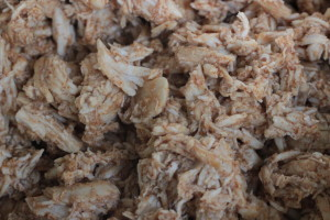 Pulled Chicken - Royal Spice